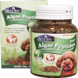 狗用產品 倍力 BLUEBAY 藻麗寶強效海藻胜肽粉 Algae Peptides 100g 寵物用品店推薦