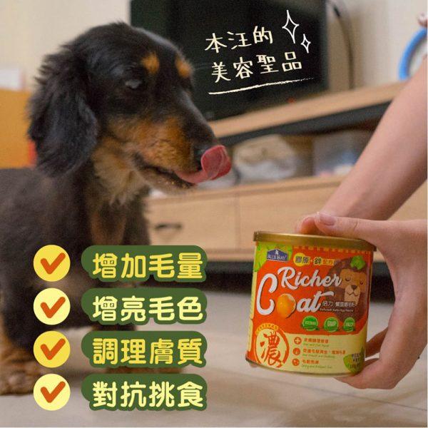 狗用產品 倍力 BLUEBAY 鱉蛋爆毛粉 寵物用品店推薦