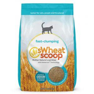 貓用產品 sWheat Scoop 小麥貓砂 Fast-clumping 淨味凝結天然小麥貓砂 寵物用品店推薦