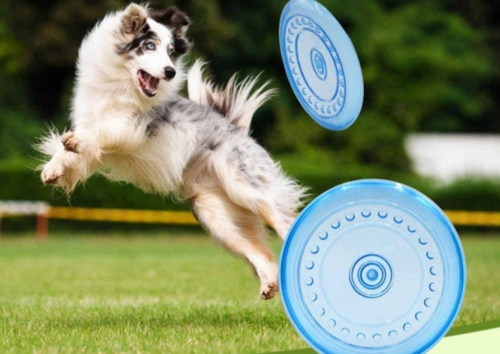 狗狗拋接玩具
