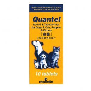 傷口護理 Chanelle Quantel 康圖廣效驅蟲片 寵物用品店推薦