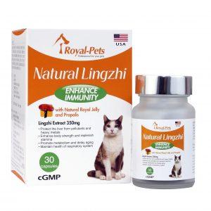 補健品 Royal-Pets 天然靈芝 30粒膠囊 寵物用品店推薦