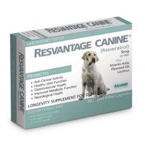 狗用產品 Resvantage 白藜蘆醇犬用保健品 (30粒) 寵物用品店推薦